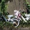 放置自転車屋さん (発見場所: 鎌倉市)